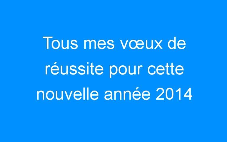 Tous mes vœux de réussite pour cette nouvelle année 2014